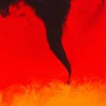 Firestorm Series # 8
